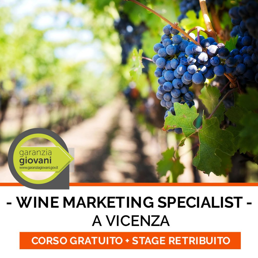 CORSO WINE-MARKETING
